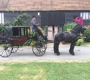 Horse and Carriage Hire in Laugharne